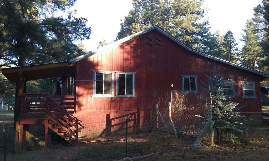fireside accommodations to pet for springs colorado c looking cabins friendly book pagosa in reasons
