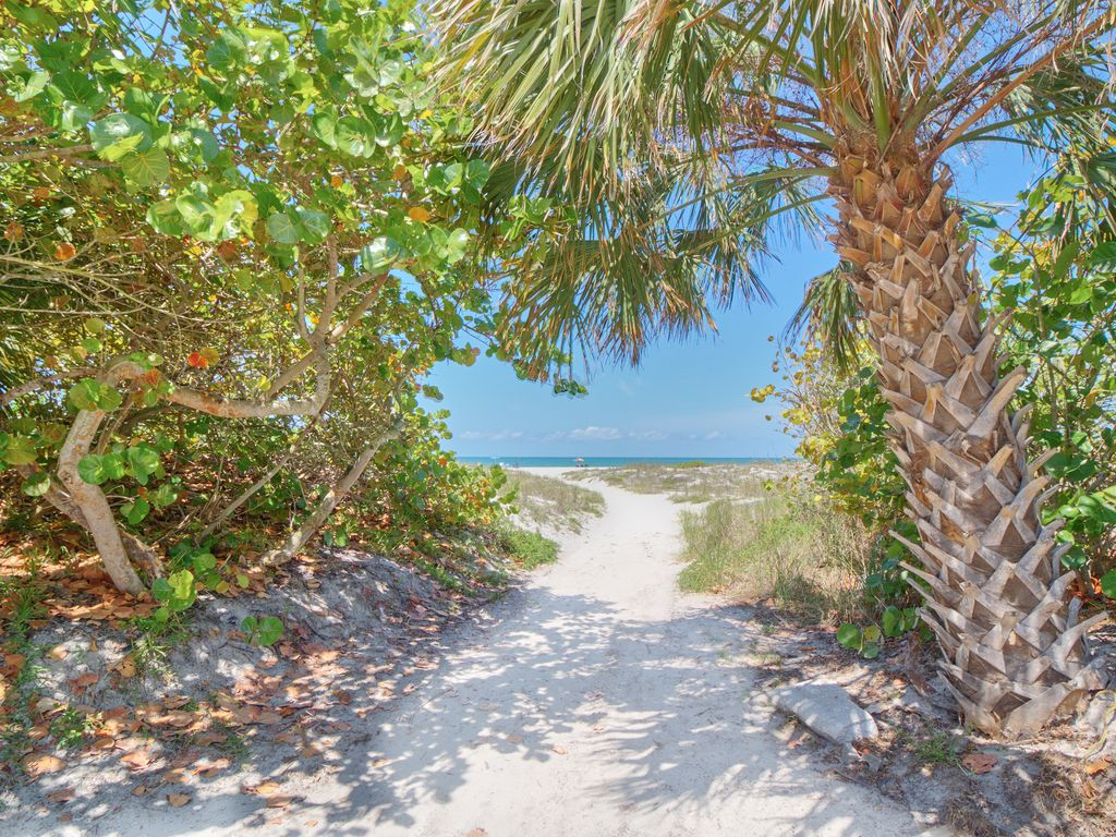 Pet Friendly Clearwater Beach. Trendy Bayway Boulevard With Pet ...