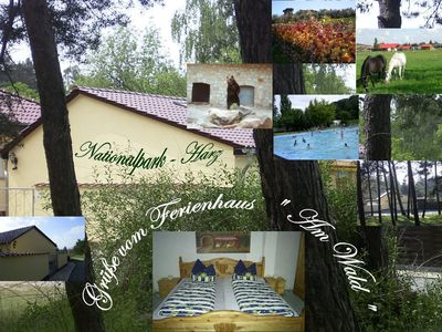 Photo for * Legendary resin * Hexentanzplatz * Quedlinburg * Brocken * 222Excursions * WLAN