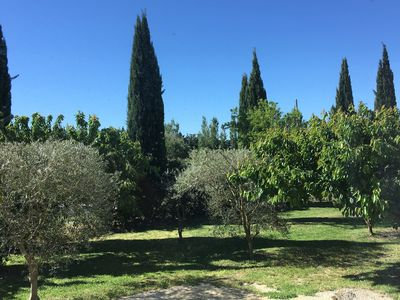 Photo for A break in Provence: charming villa at the foot of the Luberon