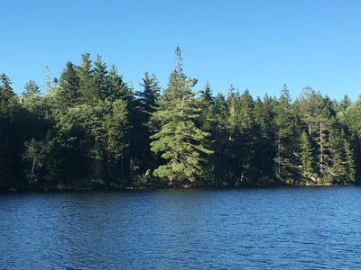 Mixed forest, undeveloped section of lake. Weed-free swimming.