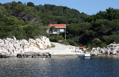 Photo for Studio appartment in Saplunara (Mljet) capacity 2+0