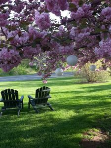 Come and sit awhile