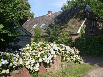 British/Dutch owned former Farmhouse adjacent to beautiful Drenthe National Park
