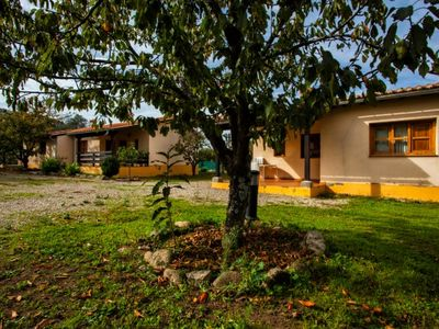 Photo for Rural apartment Fuente Del Aliso for 4 people