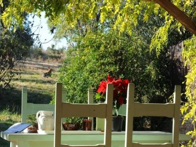 Photo for Gite Banyuls-dels-Aspres, 3 bedrooms, 5 persons