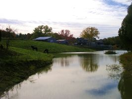 Photo for Apartment Vacation Rental in Bulls Gap, Tennessee