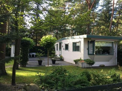 Photo for Cosy chalet on a forest park on the Veluwe (hour from amsterdam)