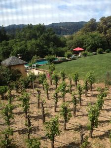 Photo for Wine country getaway; stay in a winery