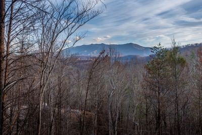 Awesome view of Mt. LeConte and an ever changing sky.