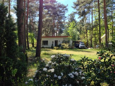 Photo for Large, attractive and enclosed wooded lot near the lake (20m)