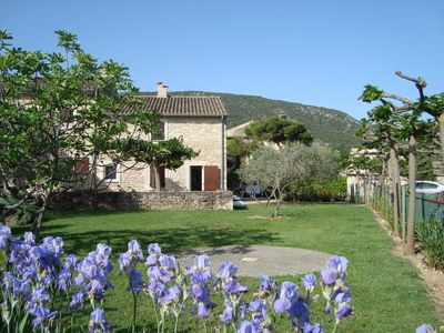 Photo for Former vineyard, now converted into beautiful holiday homes - in the heart of Provence