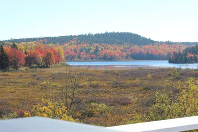View of Seal Cove Pond from the deck