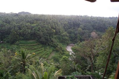 View from mainhouse to AYUNG RIVER GORGE