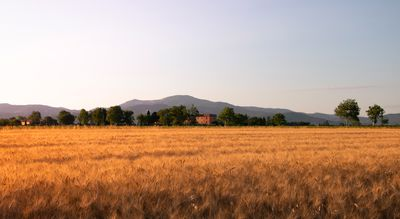 Photo for Agriturismo Il Pescinone - Cipressino, between the countryside and the sea