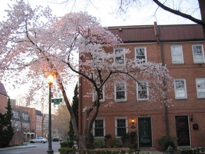 spacious rowhouse - a classic, close-in DC choice