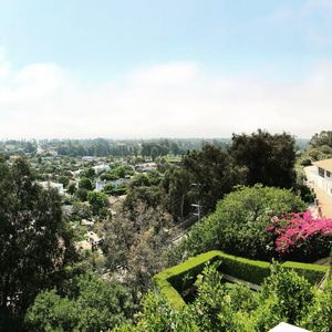 Photo for San Remo House over Santa Monica