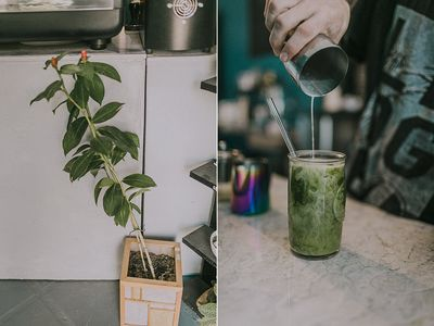 Photo for Eco Friendly Hostel and Specialty Coffee