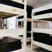 Photo for Dolce Vita Caribe Beach - Bunk bed in Female dormitory room