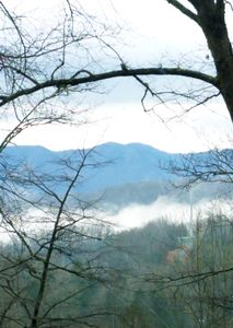 Photo for CONTEMPORARY CABIN near ARTS & CRAFT COMMUNITY 5 Miles to DOWNTOWN GATLINBURG