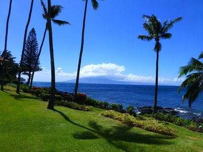 Photo for Oceanfront Tropical Gardens and Flowers