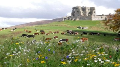 Photo for The Castle Byre, self-catering accommodation next to historic Auchindoun Castle