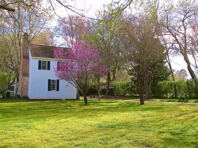 Cottage back view with redbud in bloom