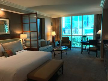 Signature at ~MGM~ Grand Junior Suite  up to 25% off MGM Rates!  Contact us!