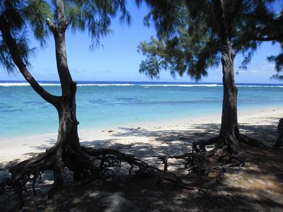 Photo for Beau T3 standing 50 meters from the lagoon