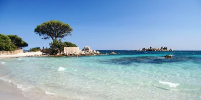 Photo for PROMO - Charming villa by the sea - Palombaggia beach