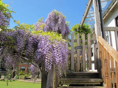 Photo for The Wisteria Suite - Cheerful family apartment with pool and tennis court