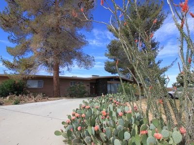 Photo for Lava House - Mid-Century Modern!  Close To Park, Awesome Stereo & Records.
