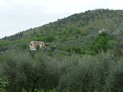 Photo for Beautiful family home - three independent apartments overlooking olive groves
