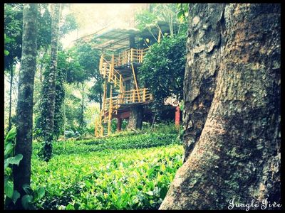 Photo for Nature Plantation View/Couples Stay/Tree house