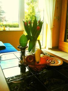 Photo for 1BR Apartment Vacation Rental in Daun