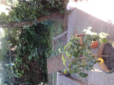 Photo for Montpellier, quiet house, garden, 15 minutes from beaches