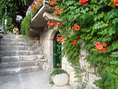 Photo for Vacation home Sonja (OMI500) in Omis - 4 persons, 3 bedrooms