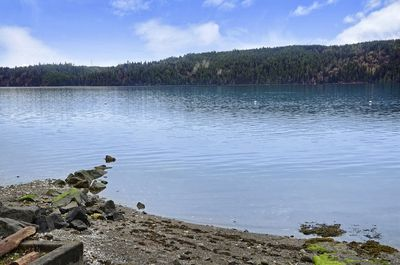 Beach at medium to high tide is perfect for launching your kayak or canoe.