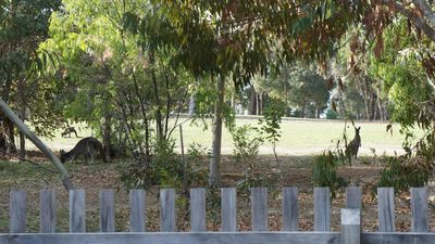 Photo for Freebridge Glades, Dunsborough Country Club Estate