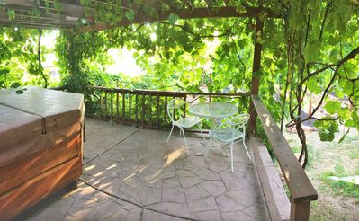 Vine-covered pergola overlooks the small commercial vineyard on the property