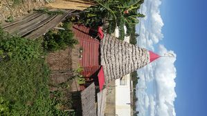 Photo for Homestay teepee with natural materials keeps freshness (ecolodge)