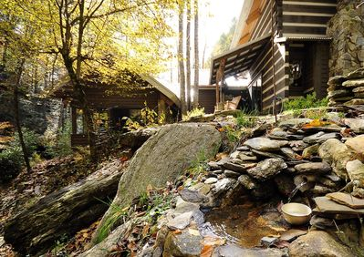 Secluded Natural Setting at Back Yard