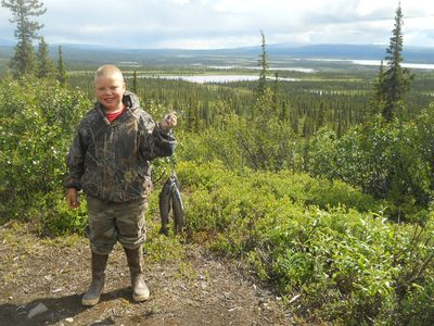 Photo for Alpine Creek Lodge-Denali Highway