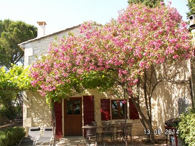 Photo for Small Provencal charming house
