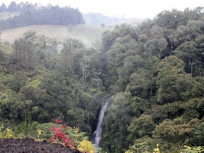 Photo for Cascada Cafe Retiro (Waterfall Café Retreat) Colombia Coffee Farm Experience PPN