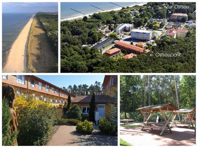 Photo for Zempin Baltic Sea Park WE 04 ** Usedom Island ** 150m to the beach ** - WE 04 * Black Seagull *