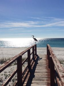 Photo for Serenity Sands Gulf Front Townhouse!