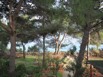 Photo for Three bedroom apartment near beach Zavala, Hvar (A-8774-a)