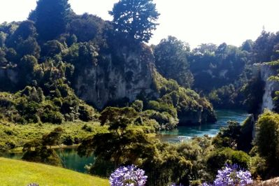 Tranquil view of the Waikato River