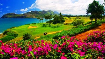 Enjoy one of Maui spectacular golf courses.